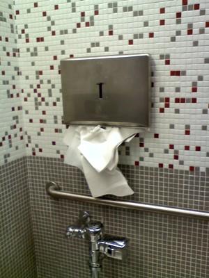 Bathroompiggy