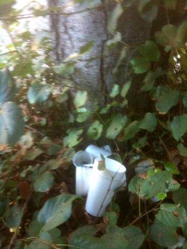 Treetrashcan