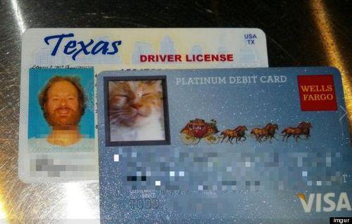 O-WELLS-FARGO-CAT-CARD-570