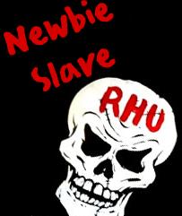 Newbie slave