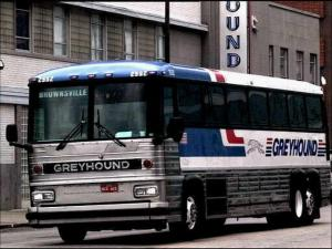 Greyhound_bus_ap_621288