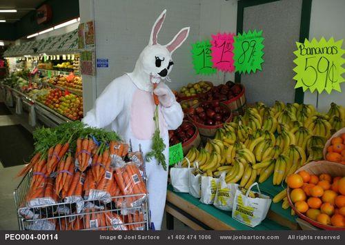 Bunnyatmarket