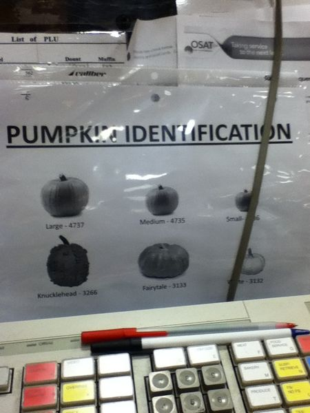 Pumpkinidentification