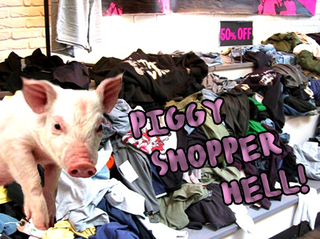 PIGGY-SHOPPER1