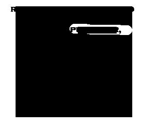 COMUNE8