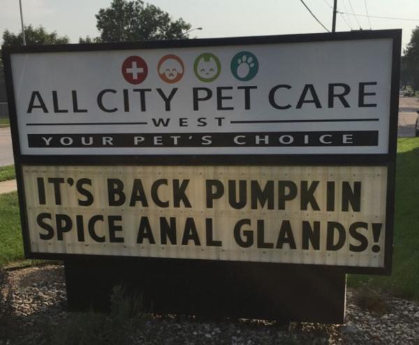 Pumpkinspicevet