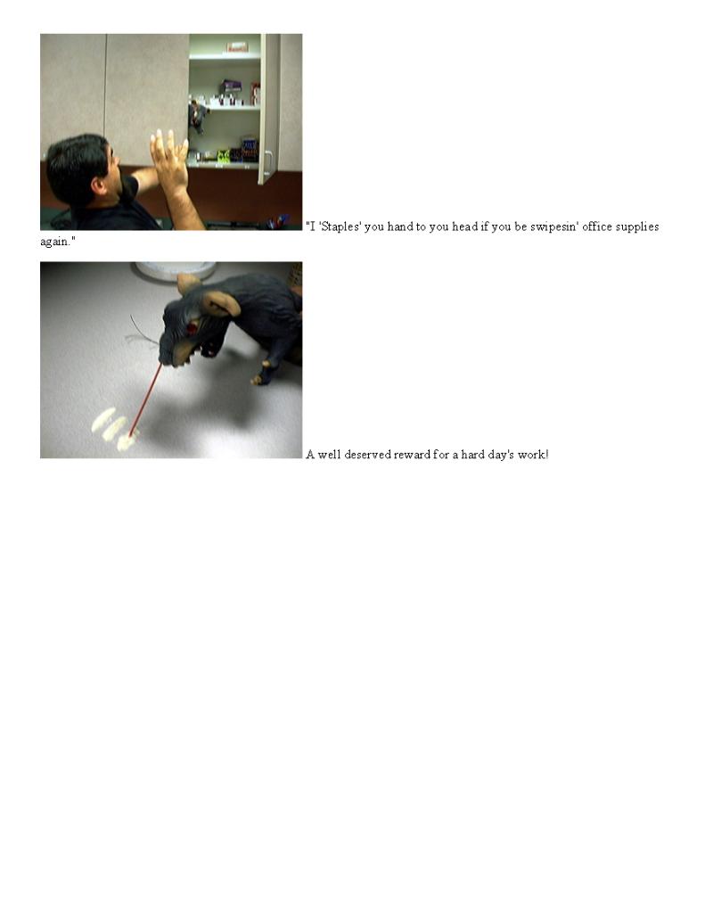 Rat1_Page_2